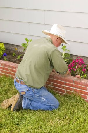 Man Planting Flowers In Garden Dressing Up Landscape To