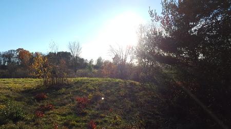 field in amherst