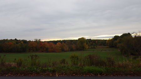 Groff Park in Amherst