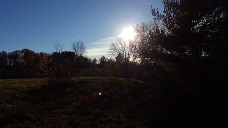 Amherst Field