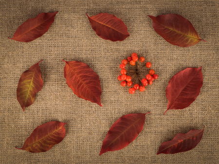 Red leaves and berries on linen background. Autumn concept