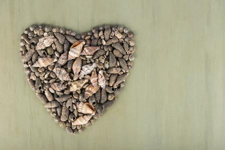 Heart shaped various seashells. I love sea concept