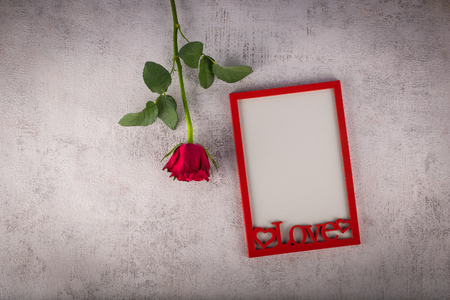Red photo frame with rose flower. Love concept 스톡 콘텐츠