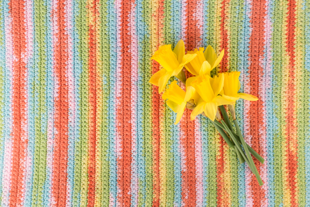 Bouquet of yellow flowers on multicolored striped background