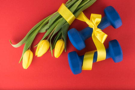 Three yellow tulips and dumbbells with bow on red background
