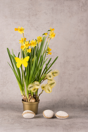 Easter composition with narcissus flowers, goat willow branches and decorative eggs