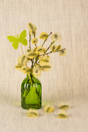 Spring still life with goat willow branches in a glass vase 스톡 콘텐츠