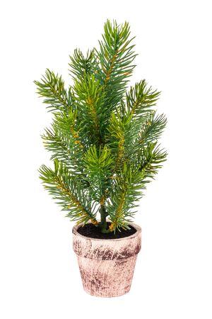 Small decorative Christmas tree in a ceramic pot