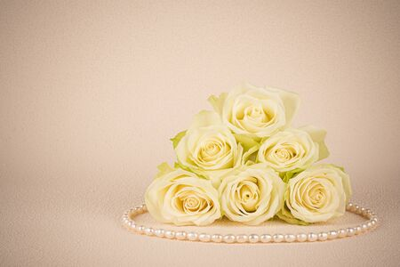 Delicate white rose flowers with pearl necklace 스톡 콘텐츠
