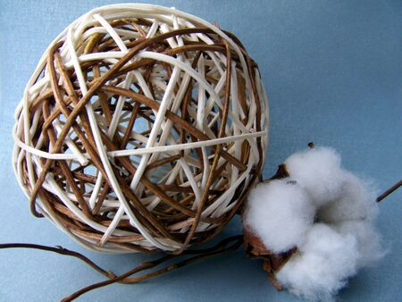 Cotton-flower, ratten ball and  twigs on the silvery background Stock Photo - 4579233