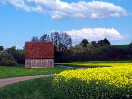 A meadow in close propinquity to the farm house  photo