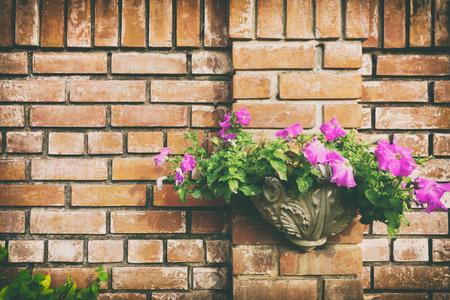 Flowerpot on brick wall