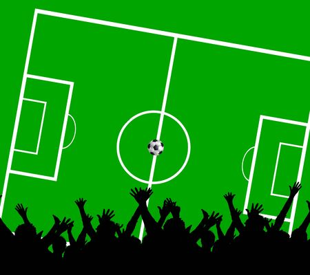 soccer fans: soccer fans