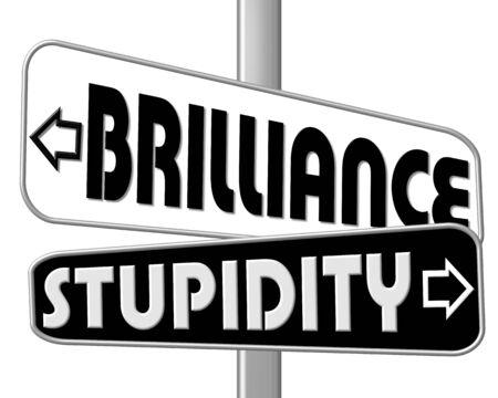 stupidity: signpost brilliance - stupidity