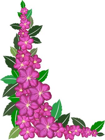 꽃 프레임 일러스트
