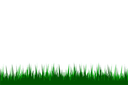 illustration of a grass background Vector