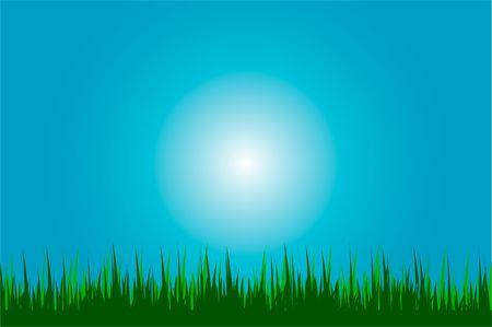 illustration of a grass background illustration