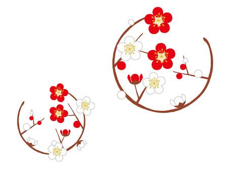 梅の花とサークル