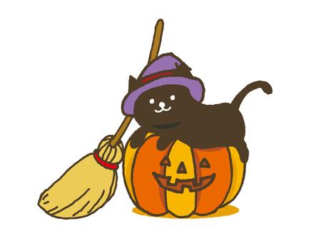 Zucca di Halloween con il gatto