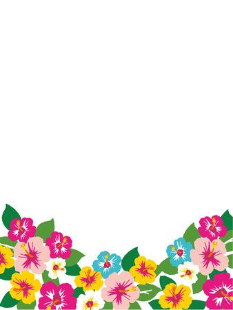 Illustration of the hibiscus. Vektorové ilustrace