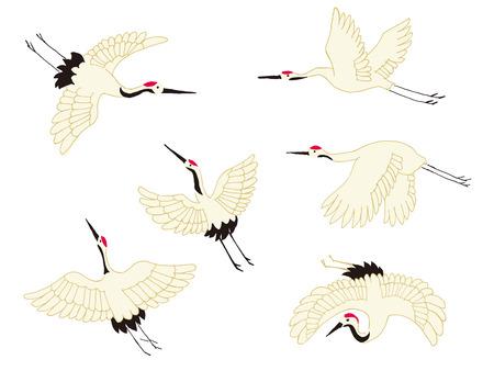 migratory: crane Illustration
