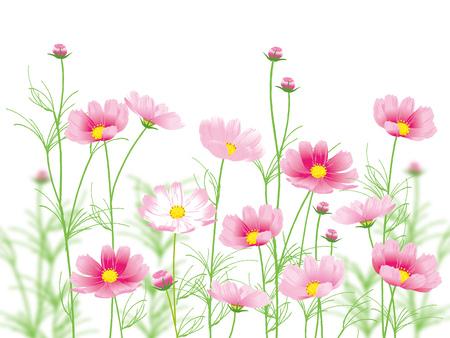 ピンクの花はベクトル イラストです。