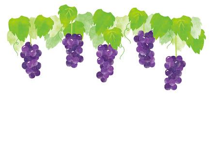 gigantic peak, grape and fruit