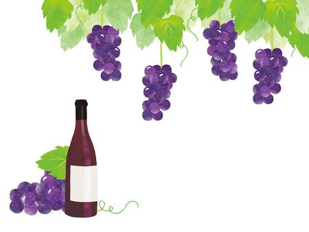 red grape: red wine, grape