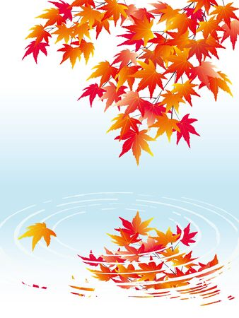 japanese maple: Maple leaves on the background of water waves