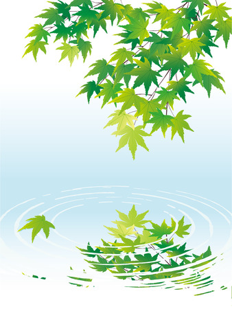 Green Maple on the background of water waves