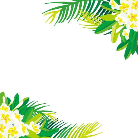 Tropical flowers plumeria with leaf Illustration