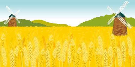 遠くにミルズと熟した小麦のフィールドです。