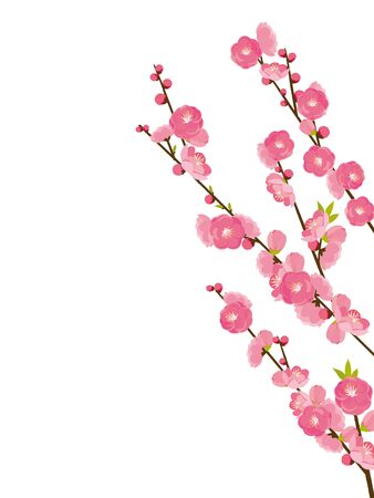 peach blossom Stock Illustratie