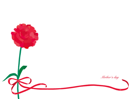 Carnation illustration for Mother's Day background.