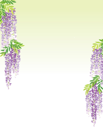 The wisteria flower background. Illustration