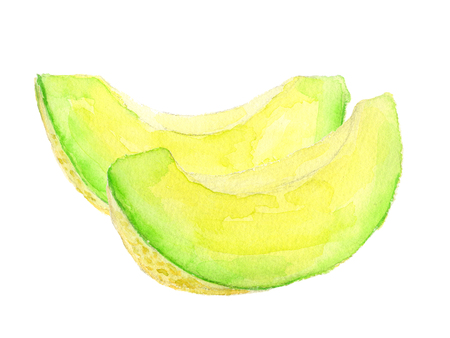 melon. watercolor painting on white background Reklamní fotografie