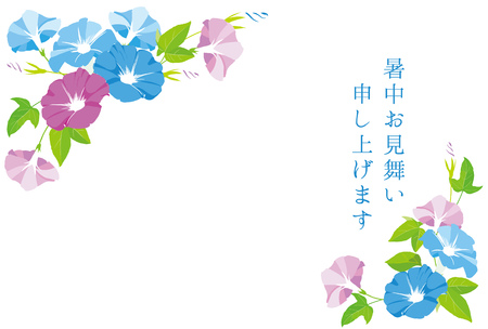 Morning glory illustration  Japanese translation is Gifts of summer.