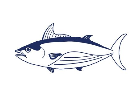 Skipjack tuna vector illustration on white background.
