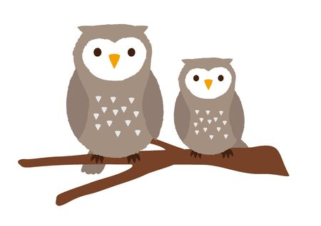 Owls  that are perching on trees vector illustration