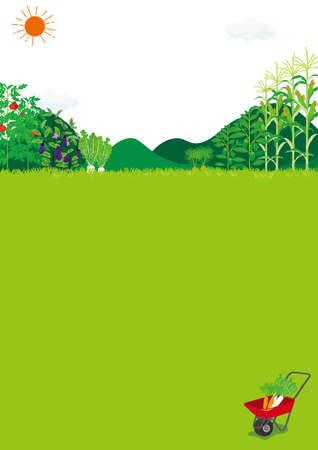 Landscape of the field Illustration