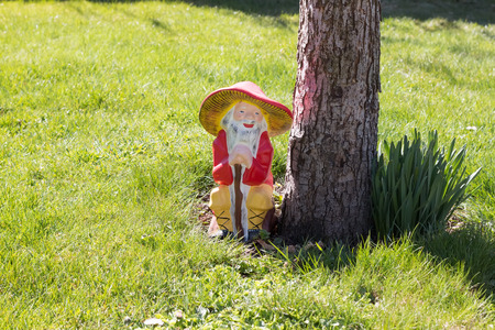 lawn gnome: Garden gnome in an autumn garden in the grass