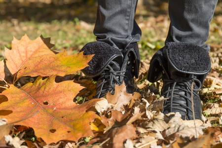 wade: Walk in the autumn park. Legs of a woman wearing boots wade dry autumn leaves