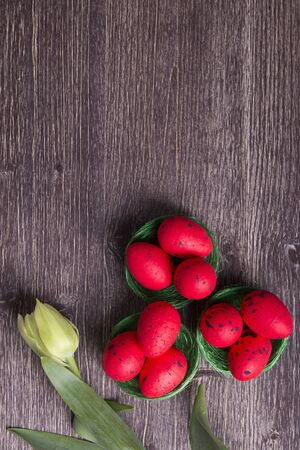 Red Easter eggs on green nest and tulip on a wooden table