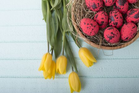 Easter background with red eggs and yellow tulips over blue background with copy space