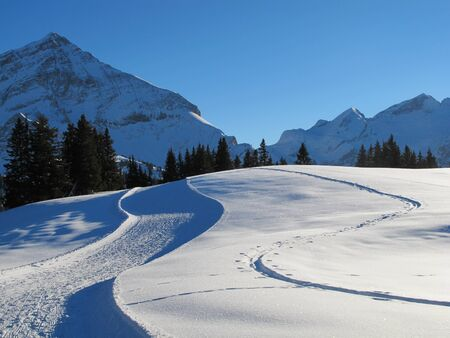 gstaad: tracks in the snow