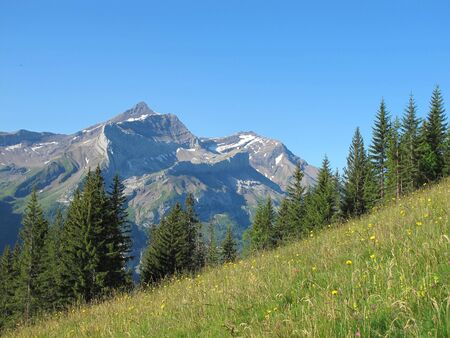 gstaad: summer in the alps