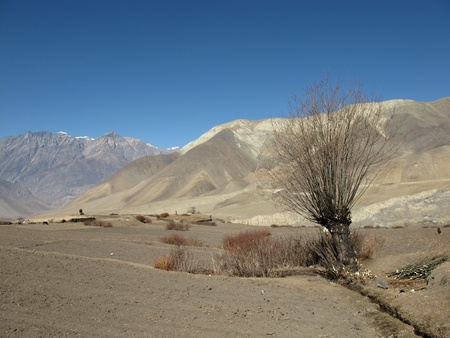 Mustang region, Annapurna conservation Area, Nepal photo