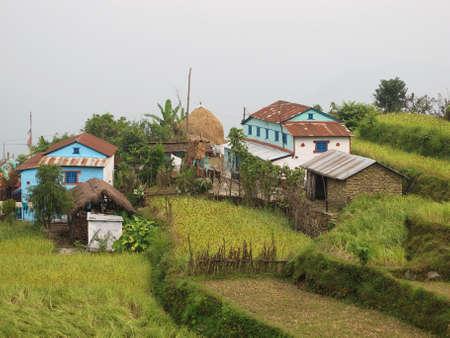 Beautiful little village near Pokhara, rice fields.
