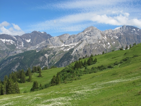 Schlauchorn and green meadow Stock Photo