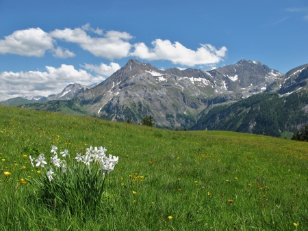 canton berne: Summer in the Bernese Oberland